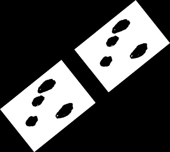 Hopper tracks