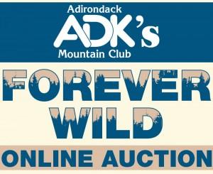 Auction Header