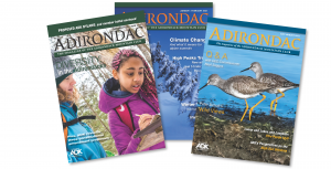 2021 Adirondac cover header