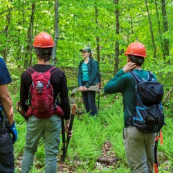 Trail workers stand in a forest