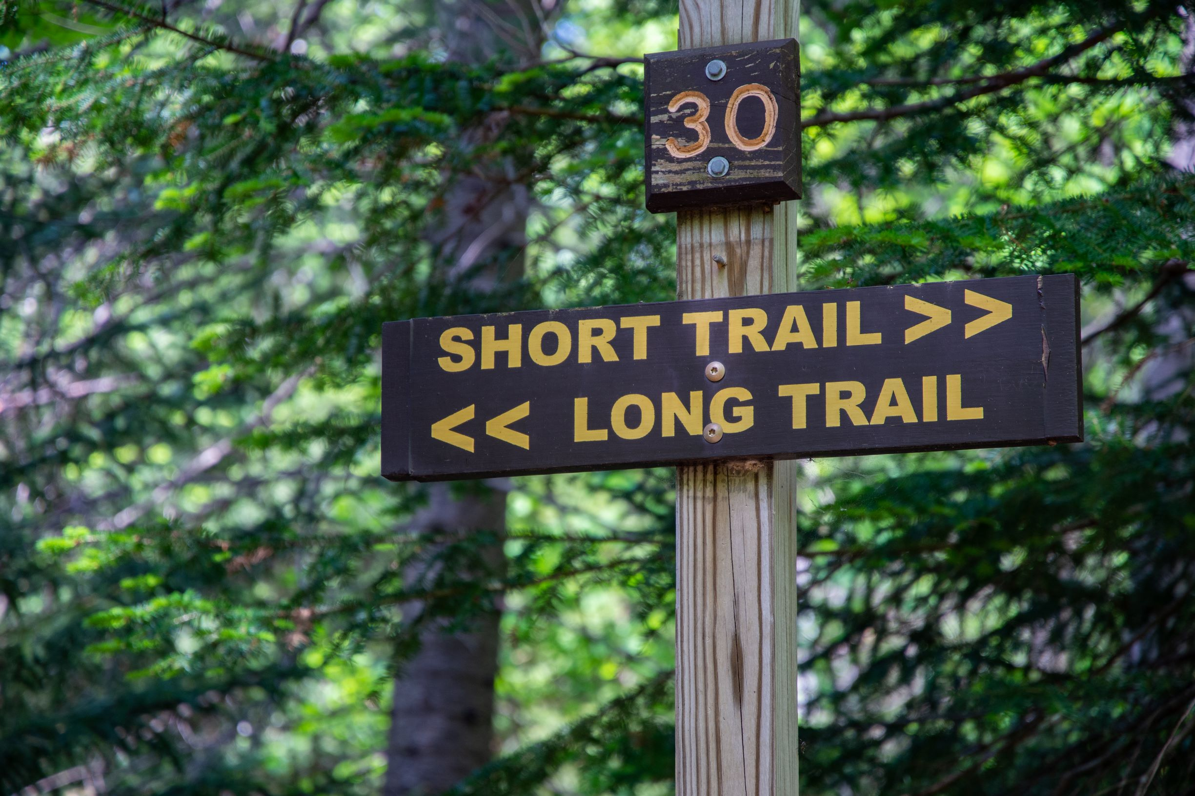 A trail sign