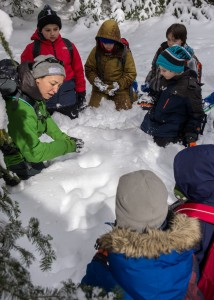 A group of students learning about animal tracks