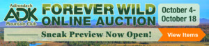 Forever Wild Online Auction Sneak Preview banner