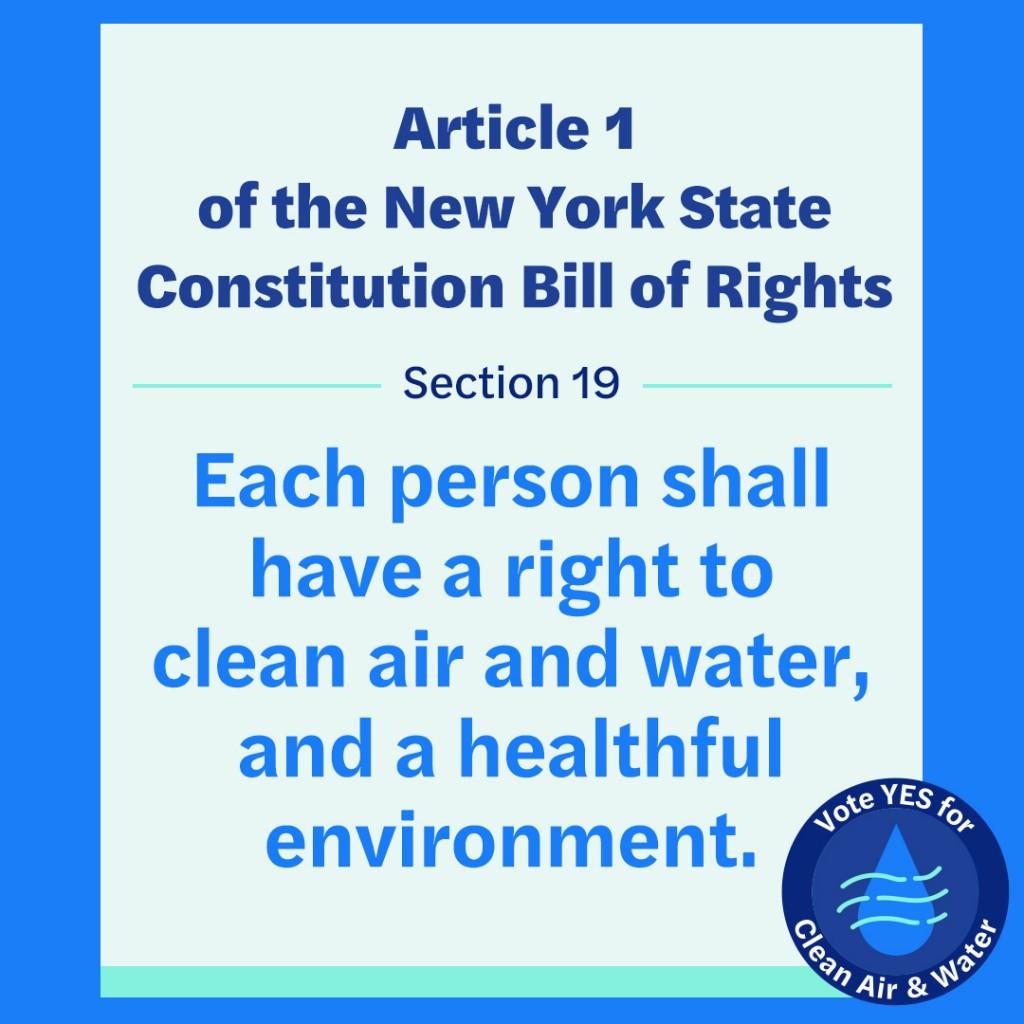 A green amendment graphic