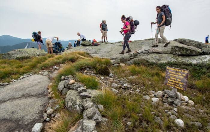 People standing on a summit